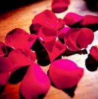 Fragranza di rosa per migliorare la memoria