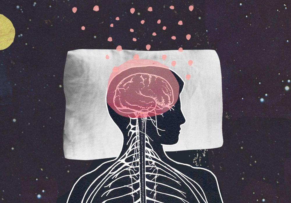 Lo sapevate che il cervello si restringe durante il sonno?