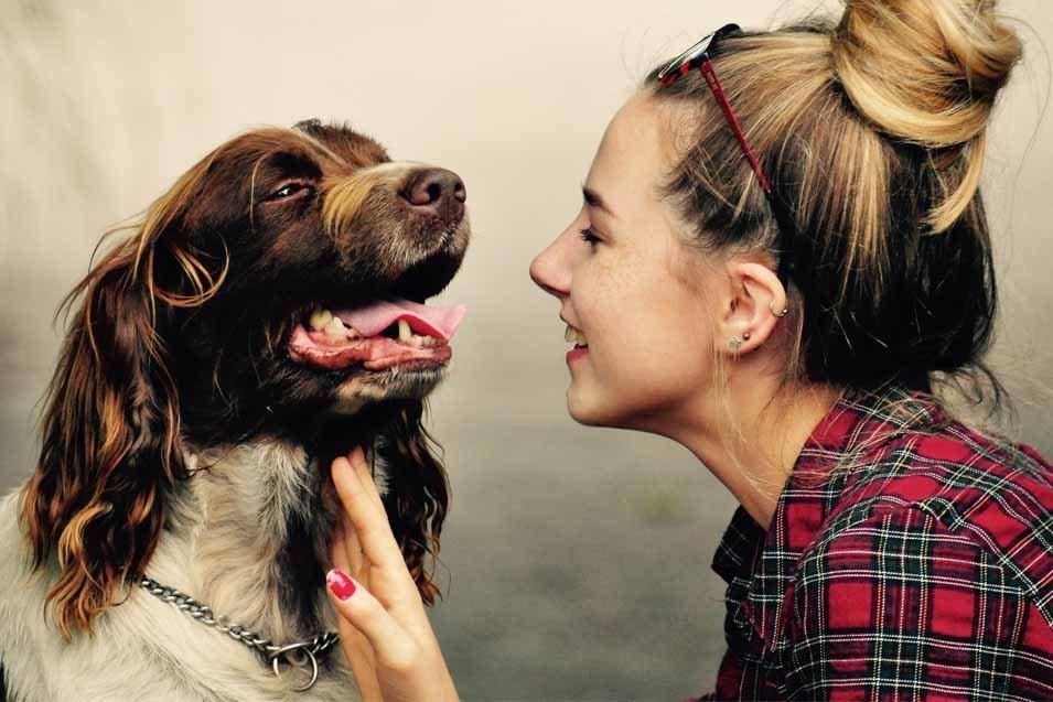 La scienza conferma: se sei stressato, anche il tuo cane sarà stressato